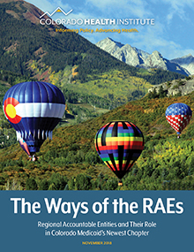 Cover of RAEs report