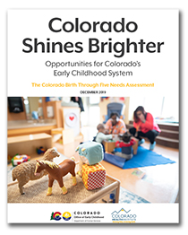 Shines report cover